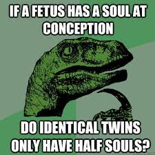 If a Fetus has a soul at conception Do identical twins only have ... via Relatably.com