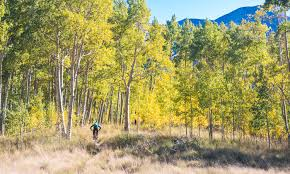 fall photo essay crested butte colorado chasing epic mountain fall photo essay crested butte colorado