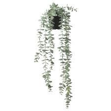 <b>Искусственные цветы</b> и растения - купить в интернет-магазине ...