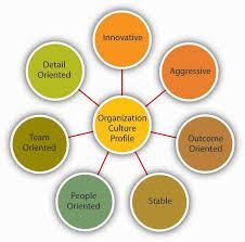 organizational culture dimensions of culture