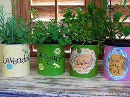 Kitchen Herb Garden Design At Home Herb Garden Home Garden