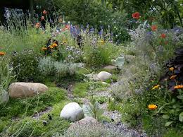 Small Picture green home Lee Amphlett Gardening Pinterest Wildflowers