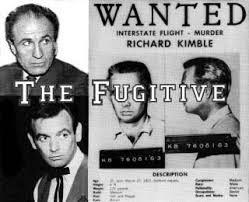 「the fugitive 1963」の画像検索結果