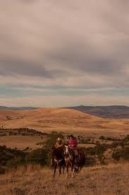 raechel running viva la vida a visual odyssey all the pretty all the wild horses and the vaqueras bravas