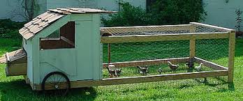 Image result for chickens tractors on wheels
