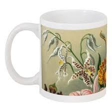 """Кружка """"<b>Орхидеи</b> (Orchideae, Ernst Haeckel)"""" #2296230 от ..."""