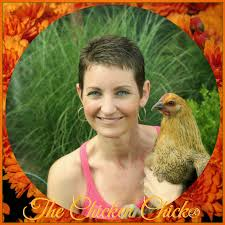 the chicken chick reg flock focus friday  kathy shea mormino the chicken chickreg