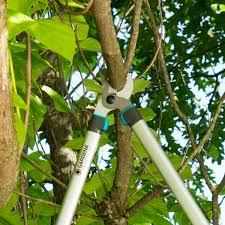 <b>Сучкорез Gardena Easycut</b> для садовых деревьев в Москве ...