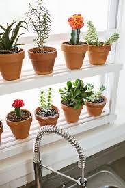 Kitchen Windowsill Herb Garden Diy 20 Ideas Of Window Herb Garden For Your Kitchen Designrulz