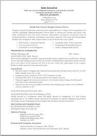 s prospecting resume vp of marketing and s resume