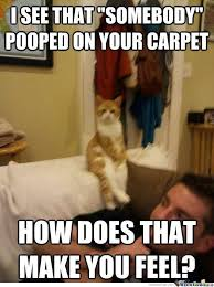 Physical Therapist Memes. Best Collection of Funny Physical ... via Relatably.com