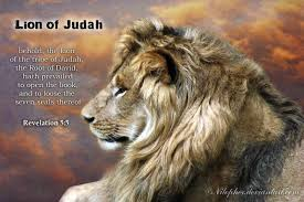 Image result for jesus christ the lion free pictures