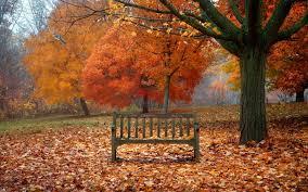 Image result for comic autumn scenes