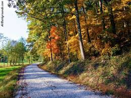 Image result for autumn scenes images