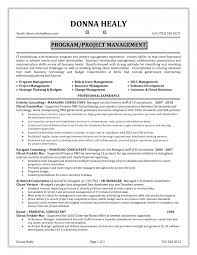 sample project manager resume entry level cipanewsletter technical manager resume technical project manager resume