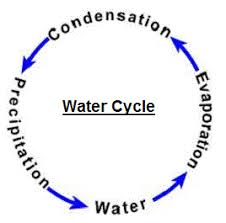 water cycle diagram  water cycle simple diagram  cycle of water in        environment water cycle diagram  alt