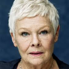 Image result for what movies did judi dench play in