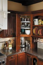 Kitchen Cabinets Lazy Susan 17 Best Ideas About Corner Cabinet Kitchen On Pinterest Kitchen