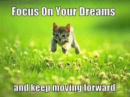 small cute cat running meme « ViralImageMaker | Funny Memes ... via Relatably.com