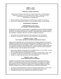 mortgage loan officer resume samples examples and templates loan banking lending executive resume mortgage loan originator job description resume loan officer assistant job description for