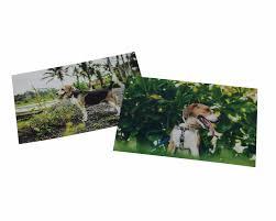 Photo <b>Printing</b> Online | All Sizes | Quality Photo Prints | Photobox