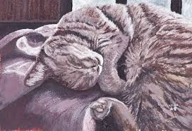 art paintingacrylic paintingcute cat paintingsoft cat painting acryclic painting soft