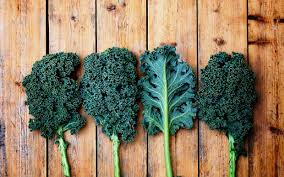 Image result for kale in a variety of forms