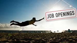 the step guide to finding a summer job hexjam