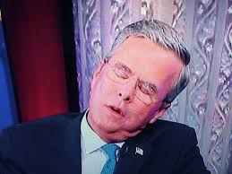 Image result for jeb bush sleeping pics