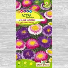 <b>Астра Помпонная</b>, смесь окрасок (78118): купить <b>семена</b> почтой в ...