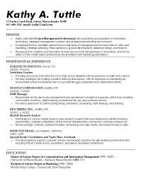 security objectives for resumes template security objectives for resume