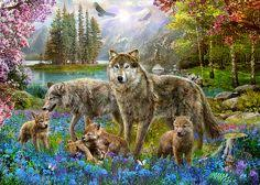 Image result for wolves in spring