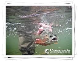 Trout Fishing - Cascade Fishing Adventures
