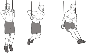 Image result for muscle up agility