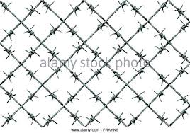 Barbed Wire Fence Pattern Isolated On A White Background As Metal With Sharp Spikes