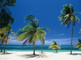 Пальмы Варадеро