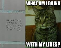 Depressed+cat_db222e_4218143.png via Relatably.com