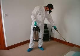 Pest Control Suit