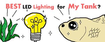 [2019] Best <b>LED Aquarium Lighting</b> for Tank Gallons & Depth