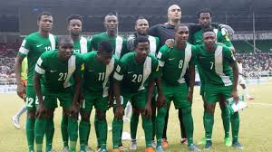 Image result for rohr super eagles