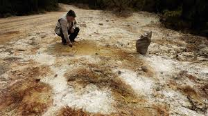 essay on the causes and effects of soil pollution in