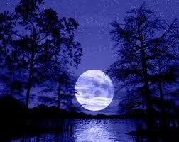 لكل محبي صور الطبيعة  اكبر تجميع لصور الطبيعة Images?q=tbn:ANd9GcTva8bHFnYq1xtiRvLJtCCs9iRljXy3piYJUV-bpyrT4wukbKNpVw