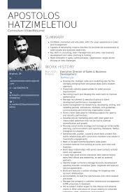 business development resume samples   visualcv resume samples databaseexecutive director of sales  amp  business development resume samples