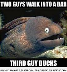 Bad Joke Eel on Pinterest | Jokes, Puns and Dad Jokes via Relatably.com