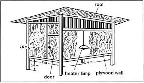 Mallard Duck House Plans   VAlineDomestic Duck House Plans