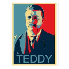 「President Theodore Roosevelt」の画像検索結果