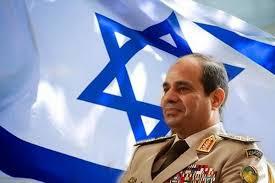 Image result for مصر در آستانه وقوع انقلابی دیگر است