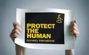 Image result for images for amnesty international