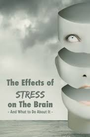 best ideas about causes of stress sarcasm in the effects of stress on the brain