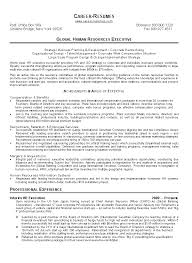 resume executive summary format mediterranea sicilia military trainer sample resume college writing from paragraph to essay example summary for resume form summary example resume